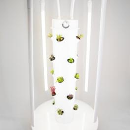 Lumières LED pour le Towergarden