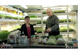 The benefits of sprouts and microgreens