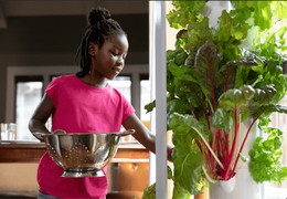 Teaching At Home With TowerGarden